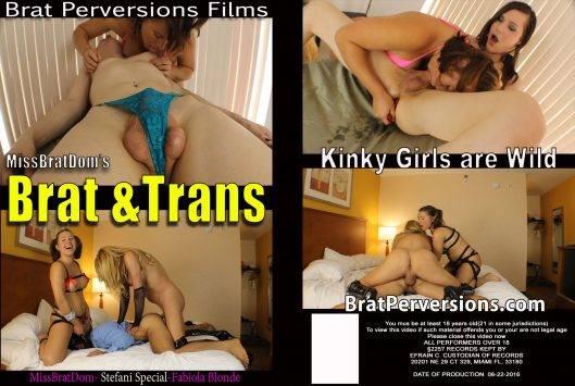 brat and trans 1